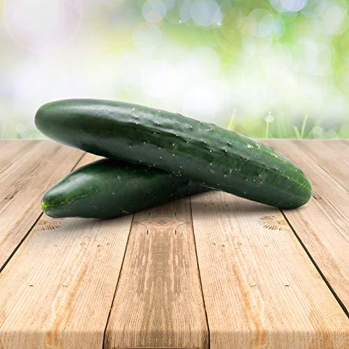 Portugiesische Gurke 25 x Samen - Aus Portugal 100% Natürlich Ohne Chemische Anzuchthilfe Oder Gentechnik, Einfach Nur Natur Pur