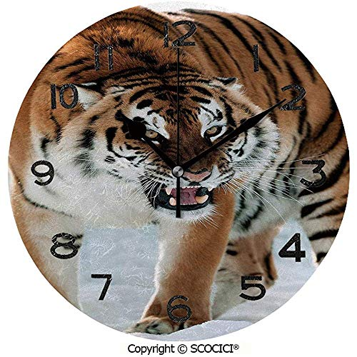 L.Fenn Reloj Redondo Primer Plano De Panthera Tigris Altaica Gigante S