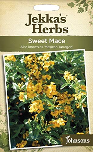 Johnsons Seeds Jekka Herbs Sweet MACE Graines d'escarpin - 1