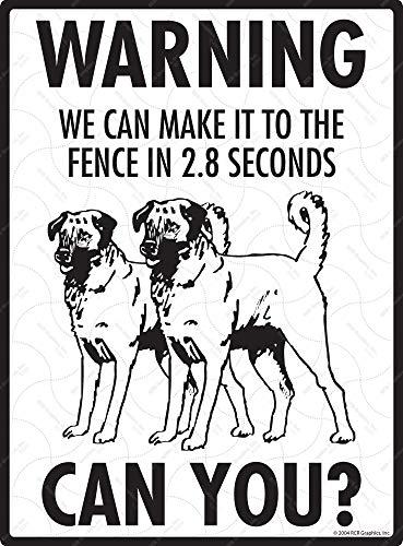 SignsWithAnAttitude Warning! Anatolian Shepherd - Exterior We to The Fence Aluminum Beware Dog Sign - 9' x 12'