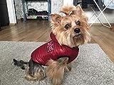 Zoom IMG-2 ducomi alaska giacca cane impermeabile