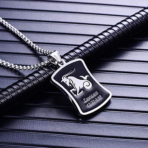 Colgante de zodiaco, Capricornio, plata de acero inoxidable negro, símbolo astrológico, collar personalizado de moda, regalo para hombres, regalo de cumpleaños