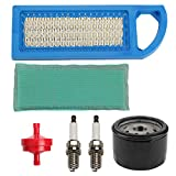 Wellsking 697153 697014 Air Filter with 696854 795890 Oil Filter for BS 794422 698083 797008 Intek 15.5 and 17-17.5HP Tractor Engines Lawn Mower