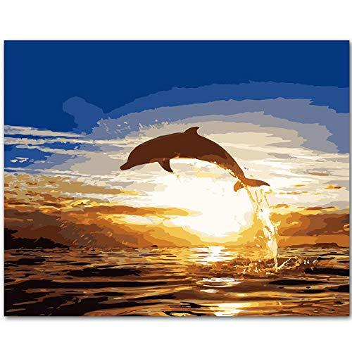 DSJDSFH DIY Ölgemälde Malen Nach Zahlen Erwachsene Erwachsene Anfänger Kreatives Gemälde Auf Leinwand Malen Nach Zahlen Kits Home Haus Dekor 16X20 Zoll Delphinspringen (Ohne Rahmen)