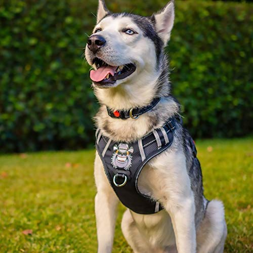BABYLTRL Large Dog Harness No Pull Anti-Tear Adjustable Pet Reflective Oxford Soft Vest for Large Dogs Easy Control Harness (Dog Collar Included) (L, Black)