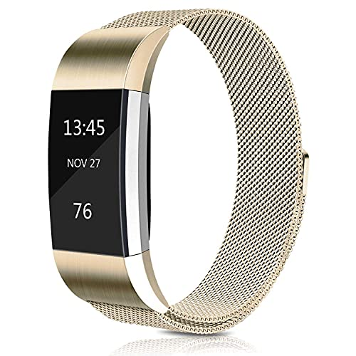 Amzpas Metal Replacement Bands Compatible with Fitbit Charge 2 Bands, Adjustable Stainless Steel Metal Wristbands Strap for Fitbit Charge 2 HR Fitness Tracker Men Women (Large, Champagne)