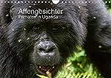 Affengesichter - Primaten in Uganda (Wandkalender 2020 DIN A4 quer): Markante Gesichter und Mimiken Ugandas Primaten (Monatskalender, 14 Seiten ) (CALVENDO Tiere)