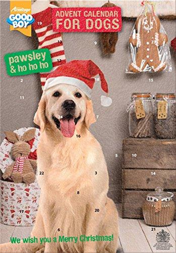 Armitage Hundespielzeug pawsley Hund Adventskalender