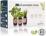cultivea set completo - fai crescere le tue di erbe aromatiche - 100% semi ecologici e biologici - semi con 3 vasetti di vetro (erba cipollina, cipollina, basilico) – do it yourself -