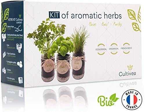 Cultivea Kit completo hierbas - Cultive propias hierbas