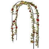 KOOPMAN - Arco para Rosales - X61250000