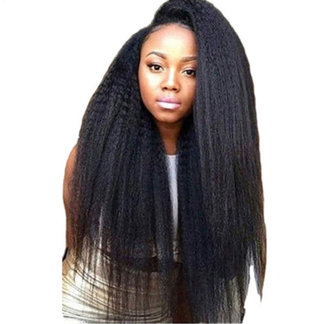 覚えている資料判決女性レースフロントかつらふわふわブラジルのremy人間の髪の毛ストレートヘアレースかつら赤ちゃんの髪の毛180%密度ナチュラルブラック26インチ