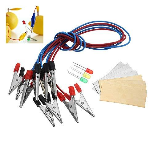 Batterie-Lichtdioden-Set, Orange Kartoffel, Zitrone, Akku, Physik, Lehren, Experiment, COD