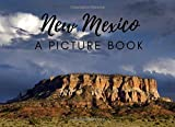 New Mexico: A Picture Book