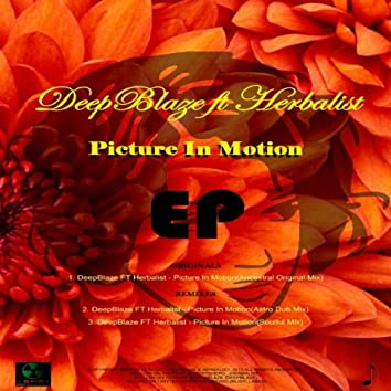 Picture In Motion EP