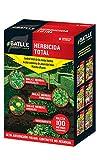 Fitosanitarios - Herbicida Total 100ml - Batlle