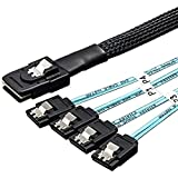 VANDESAIL - Cavo Mini-SAS interno da 0,5 m a 4 cavi SAS SATA per trasferimento dati Hard Drive (SAS)