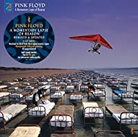 A Momentary Lapse Of Reason (Remixed & Updated) [2 LP]