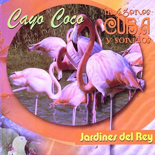 Imágenes y Sonidos (Jardines Del Rey) [Cuba]