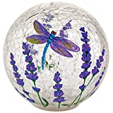 Fox Valley Traders Dragonfly LED Crackle Decorative Glass Ball
