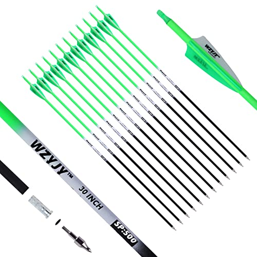 WZYJY 30 inch Carbon Arrows 500 Spine Practice Target Hunting Archery Arrow Fluorescence Color for Recurve Bow Compound Bow with Removable Tips(Pack of 12) (Green)