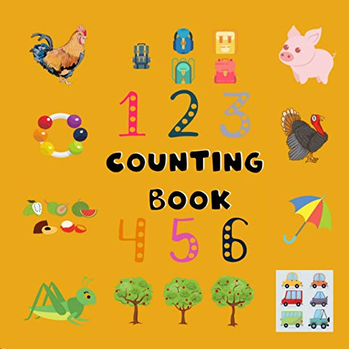 Counting Book: Counting Collection Search and Found Activity Book | A fun Picture Puzzle Counting Books for kindergarten (Ages 2-6 year olds) (English Edition)