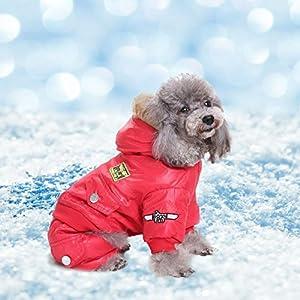 Comaie Manteau d'hiver, veste USA Air Force pour animal domestique, vêtement à capuche pour petit chiot, chaud, Medium pour animal domestique, combinaison à capuche Air-force trench à combinaison pour animal domestique, Doggie Apparel, tenue rouge, mantea