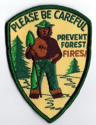 US FOREST FIRE FIGHTING PREVENT WILDFIRE PATCH Smokey Bear PLEASE BE CAREFUL