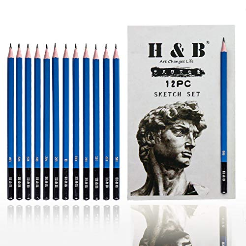 H & B Professional Drawing and Sketch Pencils Set —12 PCS, 4H, 3H, 2H, H, F, HB, B, 2B, 3B, 4B, 5B, 6B, Ideal for Drawing Art, Sketching, Shading, Artist Pencils for Beginners & Pro Artists
