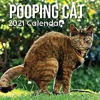 Pooping Cat 2021 Calendar: Funny Animal Gift for Gag Joke Birthday Christmas