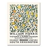 Impresiones y carteles de William Morris, póster de exposición del museo, arte del metro de Londres, impresión familiar, lienzo sin marco, pintura B 60x90cm