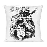 Harry Potter poster Pillow