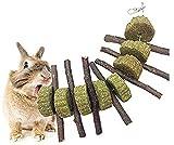 Lurowo Jouets à Mâcher, Bâtons de Pomme en Naturel Branches d'Arbres Pomme, Dents de Broyage Jouets pour Lapins, Chinchillas, Hamsters, Cochons d'Inde