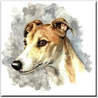 greyhound tiles
