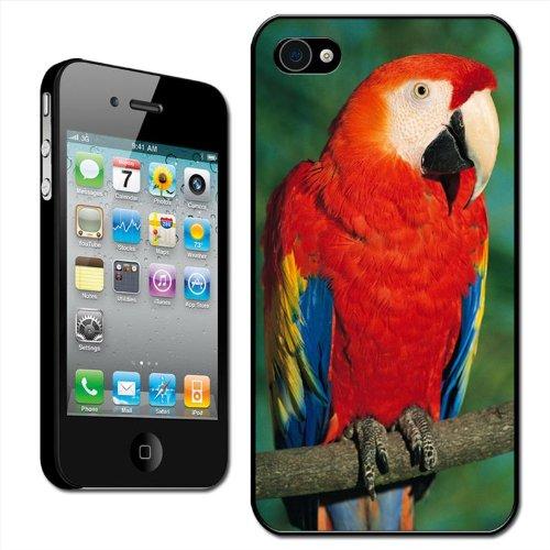 Fancy A Snuggle - Cover Posteriore Rigida Clip on per Apple iPhone 4/4S, Motivo: Ara Macao