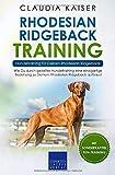 Rhodesian Ridgeback Training – Hundetraining für Deinen Rhodesian Ridgeback: Wie Du durch gezieltes Hundetraining eine einzigartige Beziehung zu Deinem Rhodesian Ridgeback aufbaust