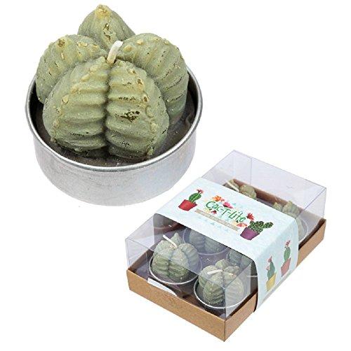 Puckator Lot de 6 Bougies Chauffe-Plat Cactus Vert pâle, Wax/métal, Taille Unique
