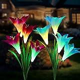 Tvird extérieur Lampes solaires de Jardin 2 Lily Fleur Multicolore Changer LED Lampes solaires à Piquet Jardin, terrasse, Jardin, (Blue&Violet)