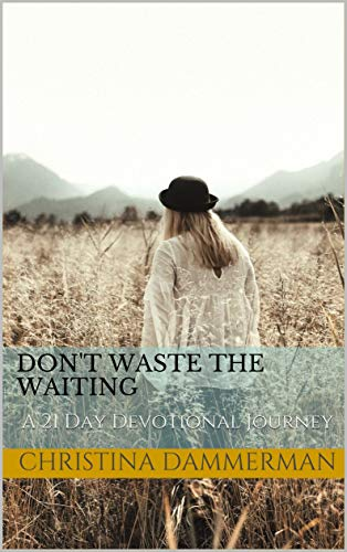 Don't Waste The Waiting: A 21 Day Devotional Journey