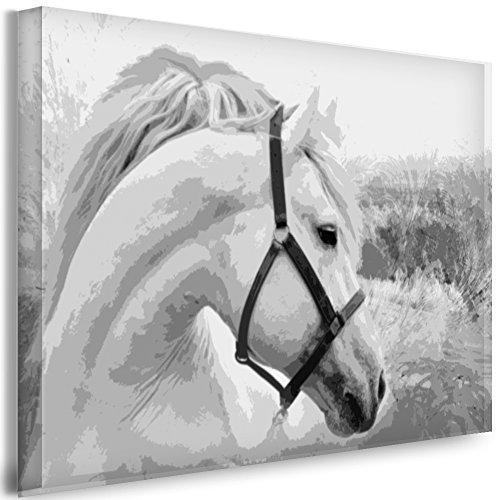 Julia-Art Leinwandbilder - Pferd Schwarz Weiss Bild 1 teilig - 40 mal 30 cm Leinwand auf Rahmen - sofort aufhängbar Wandbild XXL - Kunstdrucke QN38-1