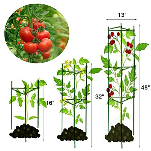 LUSA 4 Pack Tomato Cage Plant Support Assembled - Vegetable Trellis,Assembled Multi-Functional Tomato Trellis for Climbing Vegetables,Climbing Plants, Vegetables, Flowers, Fruits, Vine