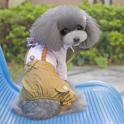 BAYUE Cool Hond Kleding Boog Hond Jumpsuit Romper Lente Huisdier Jas Bruiloft Huisdier Kostuum Chihuahua Kleding Voor Kleine Honden, XXL, roze