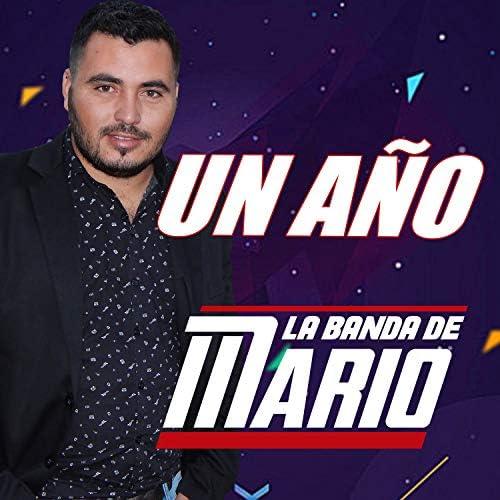 La Banda De Mario