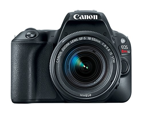 Canon EOS Rebel SL2 DSLR Camera with EF-S 18-55mm STM Lens - WiFi Enabled