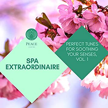 Spa Extraordinaire - Perfect Tunes For Soothing Your Senses, Vol. 1