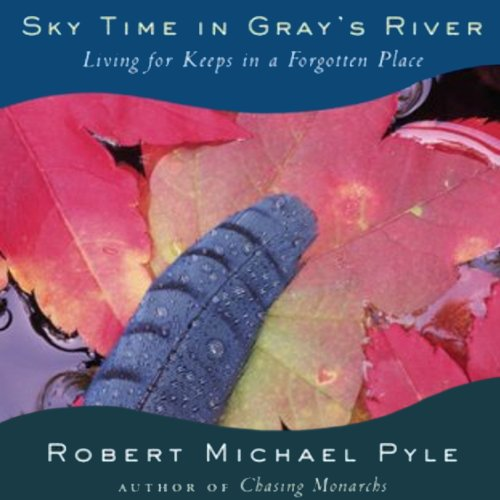 Sky Time in Gray's River audiobook cover art