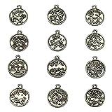 LolliBeads (TM), ciondoli in stile vintage con segni dello zodiaco, pendenti per creazione di gioielli fai da te Silver-round-zodiac-12pcs