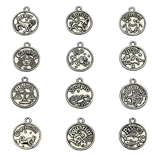 LolliBeads (TM) Jewelry Making Antiqued Tibetan Silver Vintage Style Round Charm Zodiac Set of 12 by LolliBeads