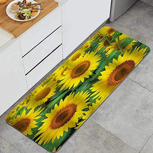 PANILUR Tappeto antiscivol,Fiore Naturale di Girasole,da Usare Come zerbino o per Soggiorno, Camera da Letto, corridoio, Cucina
