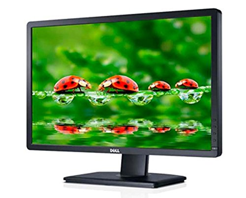 Dell P2312H 23 inch Professional LCD Monitor (Certified Refurbished)